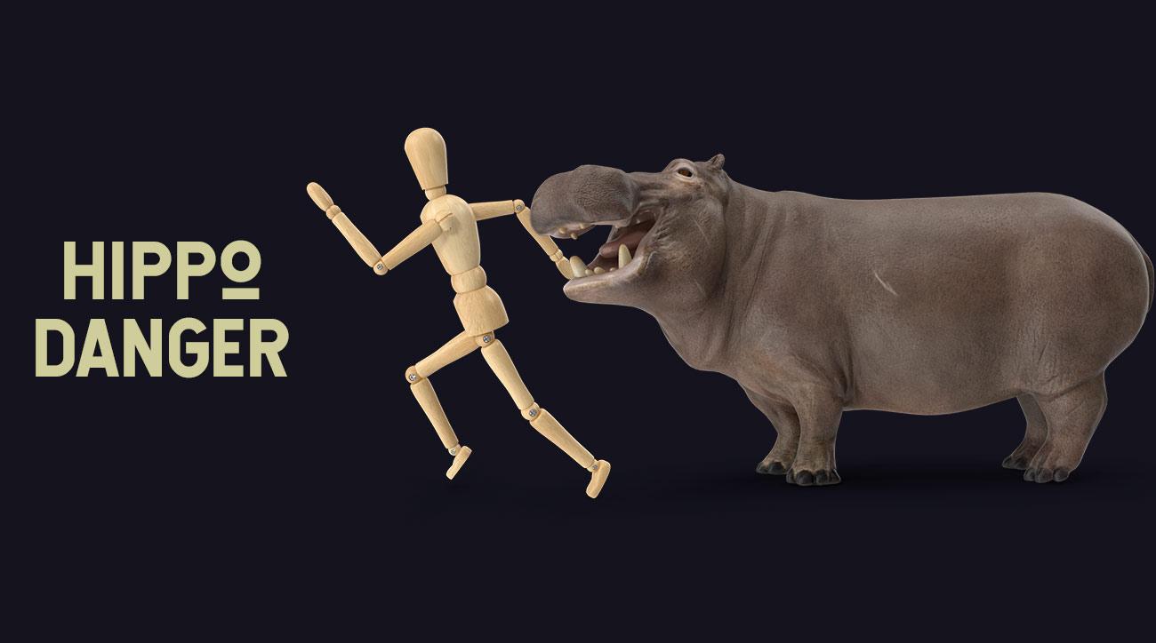 hippo attacks_
